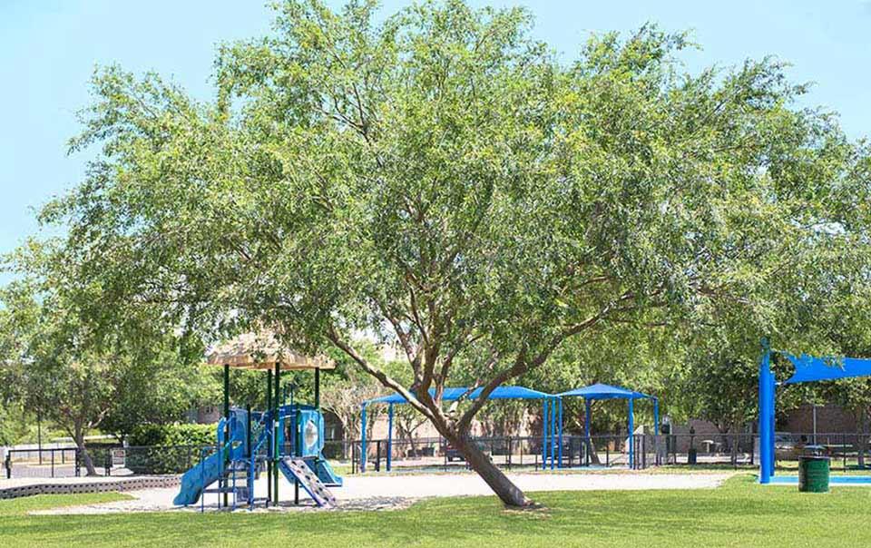 greystone properties gulf breeze reserve apartments playground